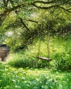 But I can't resist a swing! Especially a rustic one like this…. But I can't resist a swing! Especially a rustic one like this… 'Never Too Old' is the corner of a wild garden where we can…