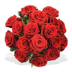 red roses... <3