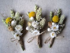 Hey, I found this really awesome Etsy listing at https://www.etsy.com/listing/108000625/spring-dried-boutonnieres-set-6