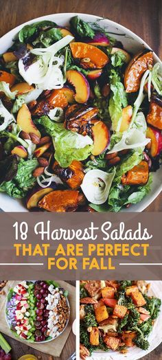 18 Harvest Salads That Are Perfect For Fall