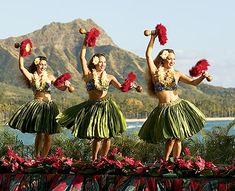 I want to see some actual hawaiian dancers while on the islands, and hey why not try it as well!