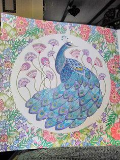 Finished last night. K. M. Peacock, Millie Marotta, Animal Kingdom coloring book.