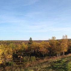 https://flic.kr/p/xuqrf8 | Fall colors are coming to fells of Saariselkä | saariselka.com | #saariselka #saariselkabooking #ruska #saariselankeskusvaraamo