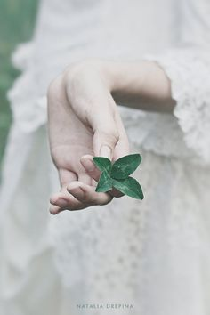 """She delighted upon finding a... """"Lucky Clover"""" by Natalia Drepina"""
