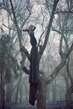 Long Black Dress Photograph By Julia Velikaya