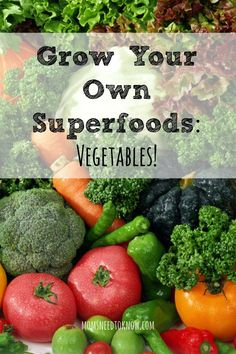 We all know that we should be eating more Superfoods and some of them are just so easy to grow in your backyard garden! Save money by growing your own!