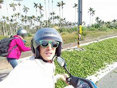 Tea Journey | Tea Leaves Withering | Mingjian | Taiwan