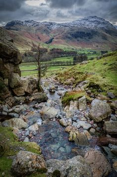 wanderthewood: Dungeon Ghyll, Lake District, England by Michael Horsfield on Flickr