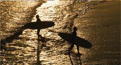 Special Offer  CASCADE SURFARI DELUXE