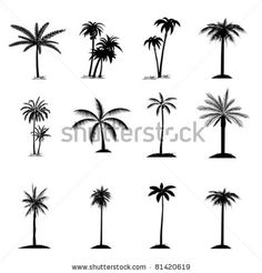 set of palm tree by Dragana Gerasimoski, via Shutterstock