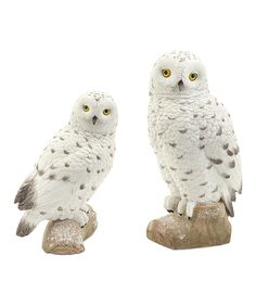 Look at this Snowy Owl Figurine Set on #zulily today!