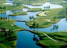 Man O' War Golf Course - Myrtle Beach, SC.  Can you way water hazard?  Actually played here.  It was fun!!  ⛳️
