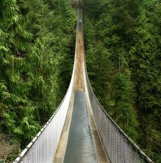 The Capilano Suspension Bridge in Vancouver, BC: Originally built in 1889, the bridge is 450 feet long and 230 feet above a river.