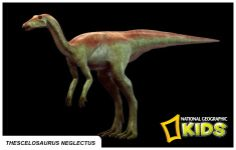 Thescelosaurus Neglectus Nat'l Geographic Info Cards