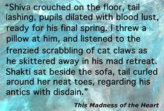 """Crazy cat quote from """"This Madness of the Heart"""""""