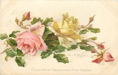 Catherine Klein Free Postcard
