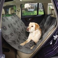 Guardian Gear Pawprint Hammock Car Seat Covers  -  Cushioned Car Seat Covers for Dogs *** Insider's special review you can't miss. Read more  : Products for dogs
