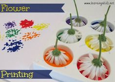 Flower painting activities for kids and toddlers. Perfect for spring and summer!