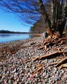 Finland, Photographs, Fat, Nature, Image, Instagram, Naturaleza, Photos, Nature Illustration