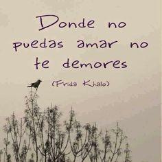 Siempre Frida........