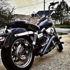 My new Harley Dyna Street Bob!