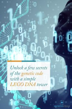 Learn about genetics as you stack your very own LEGO DNA tower! All you need are lego bricks and you are now ready to discover DNAs.
