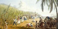 Slaven.De WIC staat bekend om slaven te handelen.