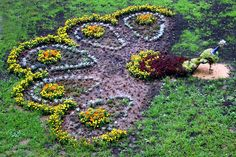 "Клумба своими руками - ""павлин"" - A flower bed with his hands - ""peacock""…"