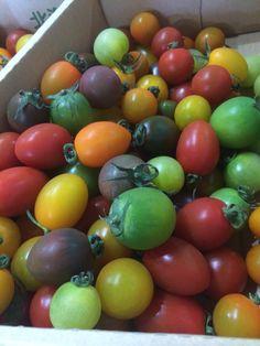 北海道産カラフルトマト Vegetables, Drinks, Heart, Food, Drinking, Beverages, Essen, Vegetable Recipes, Drink