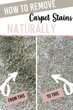 Natural Carpet Stain Remover that will get those stubborn stains out of your carpet in a hurry! A natural carpet cleaner that works. #cleaningtips #cleaningtipsandtricks #cleaninghacks #cleanhome #cleancarpet #cleaningtipsforcarpetstains #removecarpetstains via @homebyjenn Natural Carpet Cleaners, Diy Carpet Cleaner, Household Cleaning Tips, Cleaning Hacks, Cleaning Routines, Daily Routines, Diy Cleaners, Cleaners Homemade, Diy Carpet Stain Remover