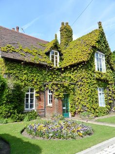 Boston Ivy covered gatekeepers cottage, Dartmouth park, Sandwell, England