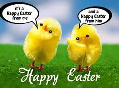 Happy Easter 2020 Images, Greetings, Quotes, Wishes - One Stop Solution For Happy Easter Images 2020 Happy Easter Funny Images, Easter Images Free, Funny Easter Pictures, Happy Easter Photos, Happy Easter Sunday, Easter Monday, Easter Images Religious, Passover Images, Happy Easter Wallpaper