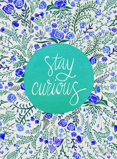 Stay Curious – Navy & Turquoise Art Print by Cat Coquillette