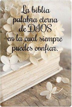 Salmos 19:7 La ley de Jehová es perfecta, que convierte el alma; El testimonio…