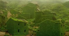 Creeping vines and other flora have enveloped a small, formerly inhabited fishing village on Shengshan Island roughly 40 miles east of Shanghai.