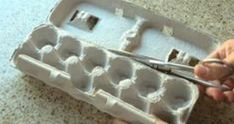 Cut out an egg carton and put it in the fridge. Storing Fruit, Egg Packaging, Home Organisation, Fridge Organization, Organizing, Linen Spray, Diy Bottle, Lifehacks, Diy And Crafts
