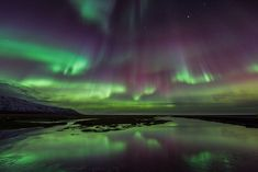 Join this winter vacation package to visit the best spots in Iceland. This package will take you to explore Iceland's famous Golden Circle, beautiful South Coast Winter Travel, Holiday Travel, Guide To Iceland, Iceland Photos, See The Northern Lights, 10 Picture, Travel Info, Travel Ideas, Iceland Travel