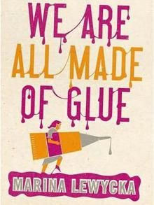 We Are All Made of Glue by Marina Lewycka. Brilliant. Never read any of her books before but really enjoyed the style of writing.