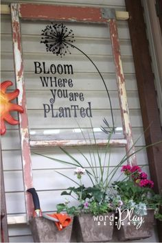 """Antique window with vinyl dandelion...""""bloom where you are planted"""". Sign up for a monthly craft idea-newsletter:  http://www.wordplaydesigns.net/#!wp-newsletter/c1zmd"""