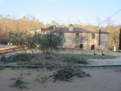 La poda de invierno en Can Bonet Turismo Rural, Sant Martí Vell Costa, Sidewalk, Winter, Side Walkway, Walkway, Walkways, Pavement