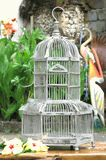 Bird Cages Birds NestsThis would work nicely for outdoor vines