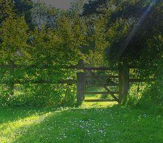 Early Evening Garden Gate 1 Print By Mo Barton