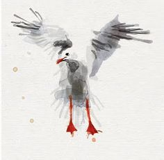 Seagull detail from Brighton illustration
