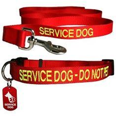 Dog: A Man's Best Friend written (Service dog Collar