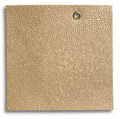 Edelman Leather   Shagreen in Cous Cous, Sh01