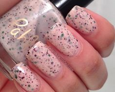 Pahlish Partridge In A Pear Tree