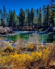 https://www.facebook.com/visitbend/photos/a.166523534262.119955.38004934262/10153423912754263/?type=3