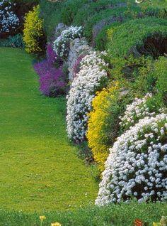"""Végétaliser un mur existant Un long mur de soutènement en pierre naturelle est un """"mal nécessaire"""" pour retenir la terre et créer un maximum de surface plane. Son parement, même de belle facture, affiche parfois une allure monotone que l'on dissimulera astucieusement au moyen de corbeilles de fleurs."""