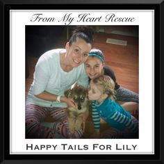 #Please  ♥+ #PIN #FMHR -  #Happy #Adoption #Day #for #Lily #Ty    *Info+Foster+Adoption+PayPal: frommyheartrescue@hotmail.com *Vet Donations: Brock St. Animal Hospital-FMHR 905-430-2644 *Gift Basket Donations: FMHRgifts@hotmail.com *Fundraising+Volunteering : FMHRfundraising@hotmail.com ~www.frommyheartrescue.com ~www.petfinder.com/shelters/ON441.html ~www.youtube.com/frommyheartrescue ~www.facebook.com/frommyheartrescue ~www.twitter.com/FMHRnonprofit ~www.instagram.com/frommyheartrescue