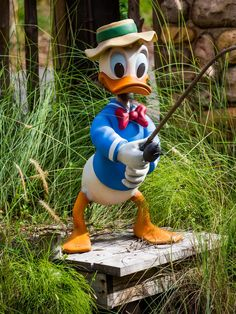 Donald at camp Minnie-Mickey